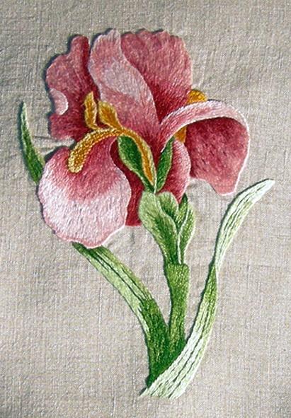 Interpretation of the famous iris of the Royal School of Needlework in London