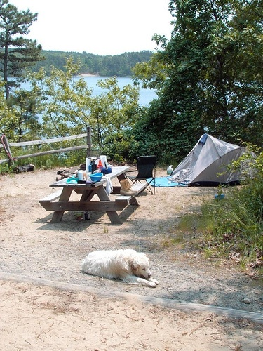 Nickerson State Park, Brewster, MA August!   State parks ...