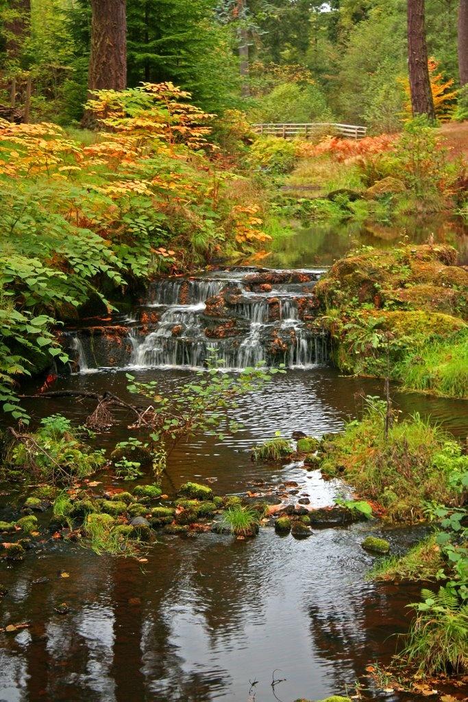 trevor walker - Cragside, Northumberland
