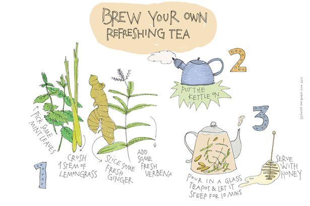 yvette van boven tea