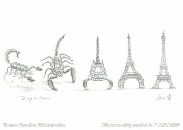 Metamorphosis Drawing Ideas Metamorphosis of the scorpion