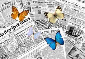 Quand les papillons s'envolent... Blog de Lecture !