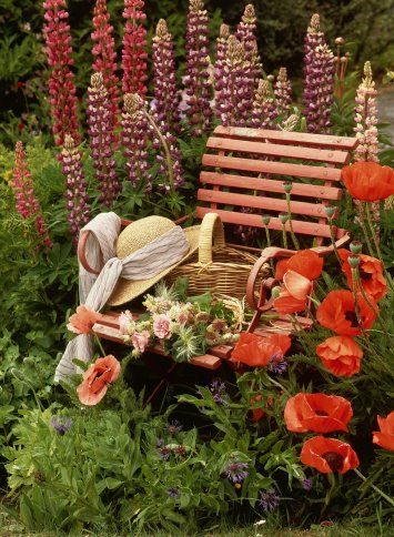 Inspiration Lane  <3Colors Combos, Gardens Seats, Warm Colors, Gardens Inspiration, Perennials Gardens, Flower Gardens, Poppies, Places, Gardens Benches