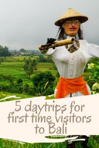 http://territorymob.com/bali-itinerary-5-daytrips-for-first-time-bali-visitors/