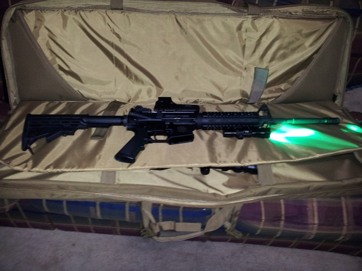 Bushmaster .223/ 5.56 with Eotech and predator light