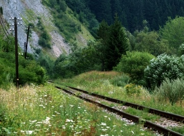 Summer view of old railroad track with wooden distribution pillars next to it. This track is located in Podbiel village, Orava region, Slovakia.