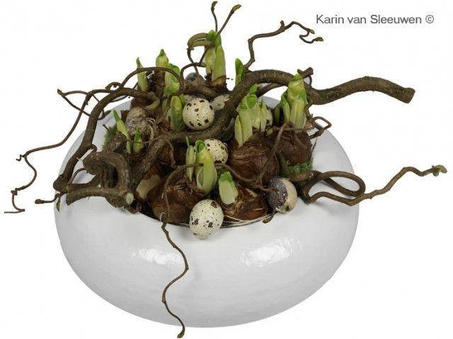 Paasbloemstuk: Narcisbolletjes in schaal voor pasen.