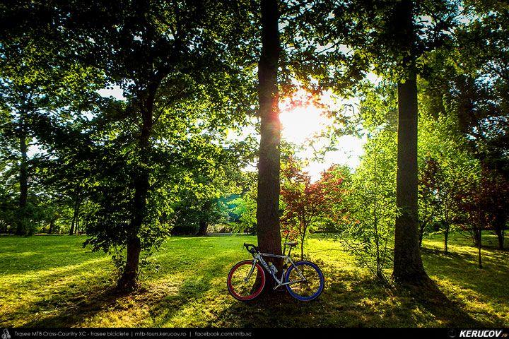 Dupa amiaza - Romania, Mogosoaia, Complexul / Palatul Mogosoaia: Canicula. La amiaza. Verde. Casti. Umbra. Mogosoaia. Muzica. Trei copaci. Plimbare. Apus de soare. Picnic. Relaxare. Culoare. Jocuri. Aglomeratie. Spatiu liber. Lacul. Adiere. Palatul Mogosoaia. Moment. Fotografii. Evenimente. Istorie. Timp. <br />Drag Master Pro SSP 2015