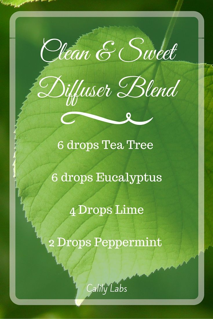 The cleansing smell of tea tree combined with eucalyptus, lime and peppermint will dispel any odors in your home. See more at www.calilylife.com