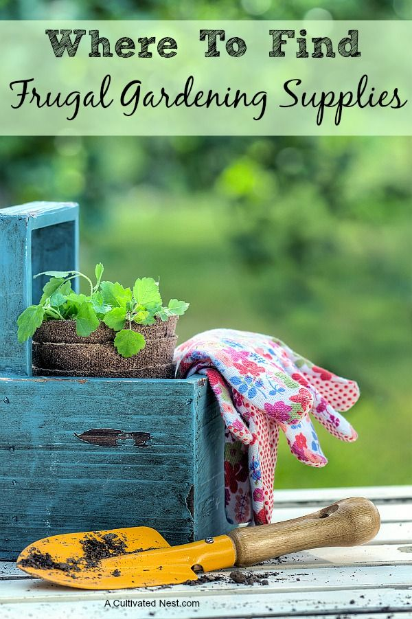 Where To Find Frugal Gardening Supplies By Manuela Williams  Gardening season is just around the corner, so it is time to start thinking about gathering those garden supplies. If you need new garden supplies this year, or just want to refresh the stash you have, you might be seeing dollar signs. But don't worry; because the truth is there are plenty of places to find frugal gardening supplies, you just need to know where to look. Take a peek below at where to find frugal gardening supplies…