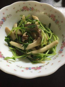 パパッと副菜☆豆苗とエリンギのサッと炒め