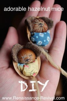 How to make a baby hazelnut mouse sleeping in a walnut shell! SOOO cute! Includes how-to video and info graphic! Renaissance-Revival.com