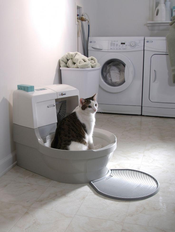 245 Best Images About Cat Litter On Pinterest Cat Litter