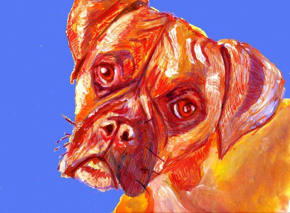 Boxer Dog Painting Poster Print of Original Painting Orange Blue ton… #doglover #DogPainting https://t.co/1NI9MVbVmV:… #dogs #pets #puppy