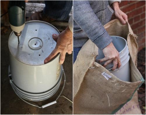 17 Apart: How To: Plant & Grow Horseradish Root