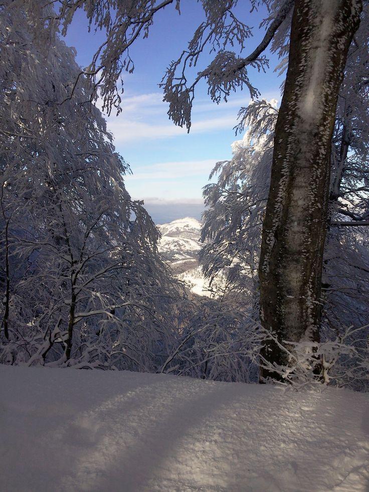 Monti Picentini, Irpinia