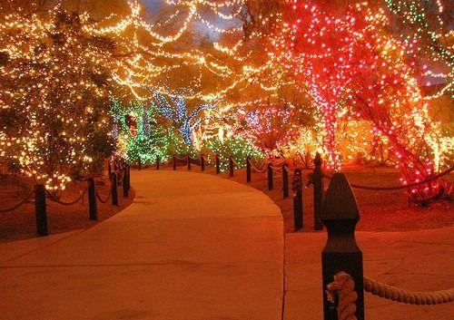 blissfully-winter