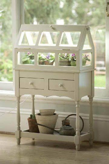 Darling little indoor greenhouse...