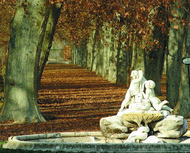 Otoño en los jardines de Aranjuez/Aranjuez gardens in autumn by Turismo Madrid, via Flickr