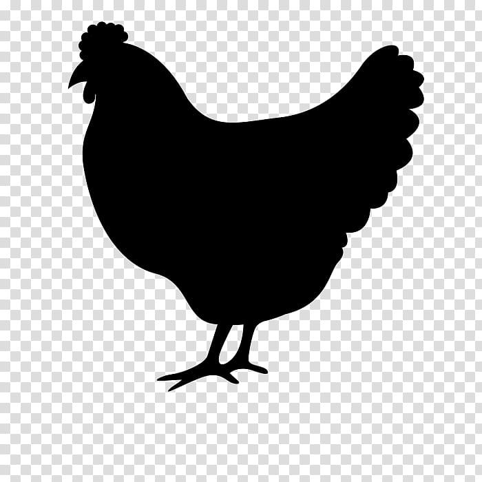 Fried Chicken Food Fried Egg Frying Silhouette Bird White Rooster Transparent Background Png Chicken Clip Art Chicken Illustration Rooster Illustration