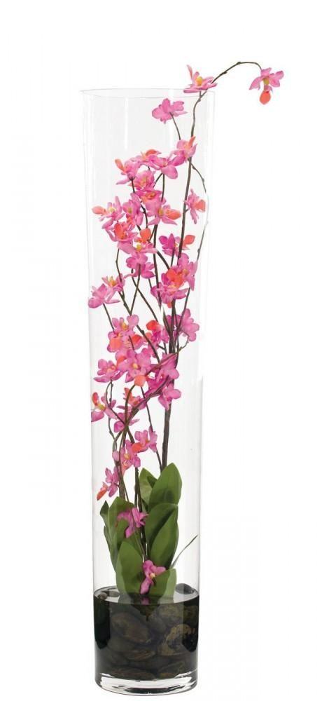 orchid terrarium for kitchen window