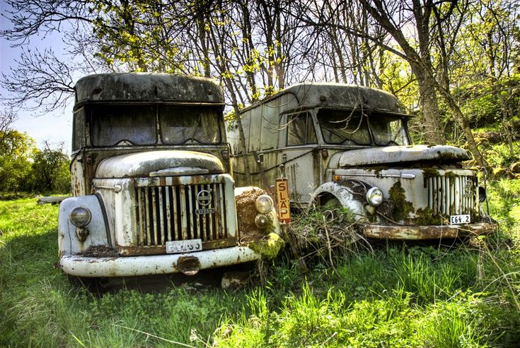 A couple of old Volvo trucks peacefully rusting away...