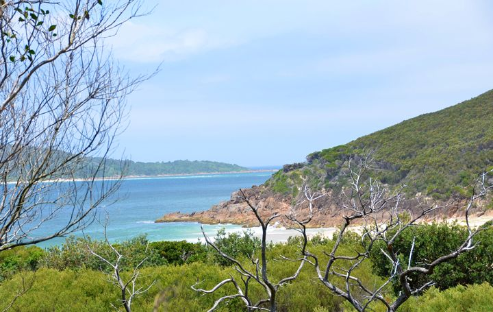 A view of Port Stephens from part-way to the summit of Tomaree Head #tomareehead #portstephens
