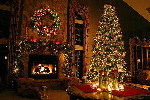 Christmas, cozy, lights, room, tree, dog