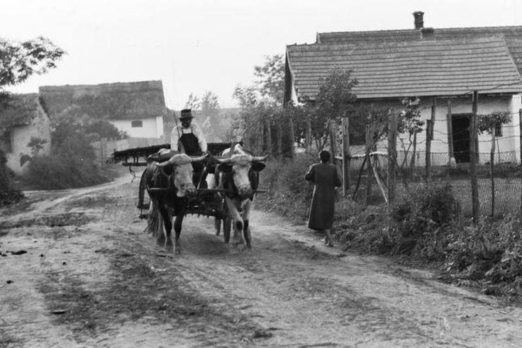 Valahol Magyarországon 1939 (fotó Konok Tamás id. Fortepan)