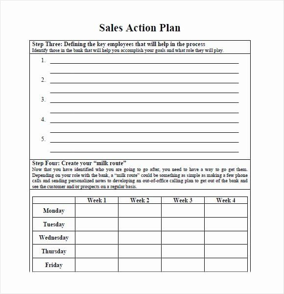 30 Sales Action Plan Template Excel In 2020 Action Plan