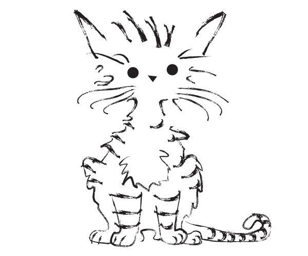 http://everythingispattern.com/?portfolio_item=cat