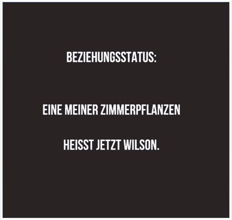 anti valentinstag sprüche lustig juhuuuu #werkennts #liebe #spaß #laugh #funny #chats #lustigesding  anti valentinstag sprüche lustig