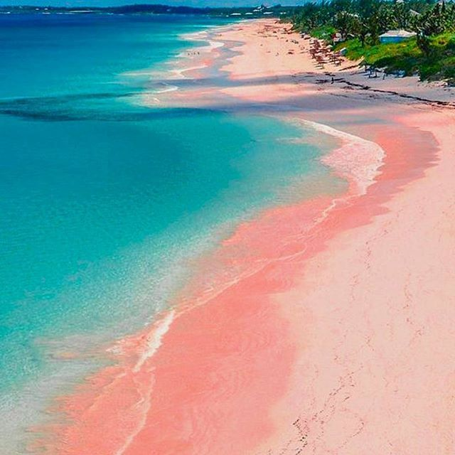 88 best pink sands beach images on pinterest beaches for Bahamas pink sand beaches