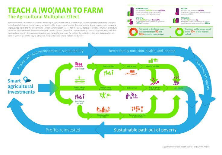 Teach a (WO)MAN to FARM.