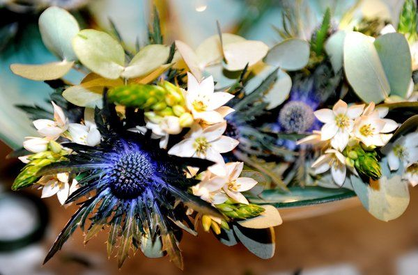 winter flower arrangements | Winter arrangement - thistles, eucalyptus and ornithogalum