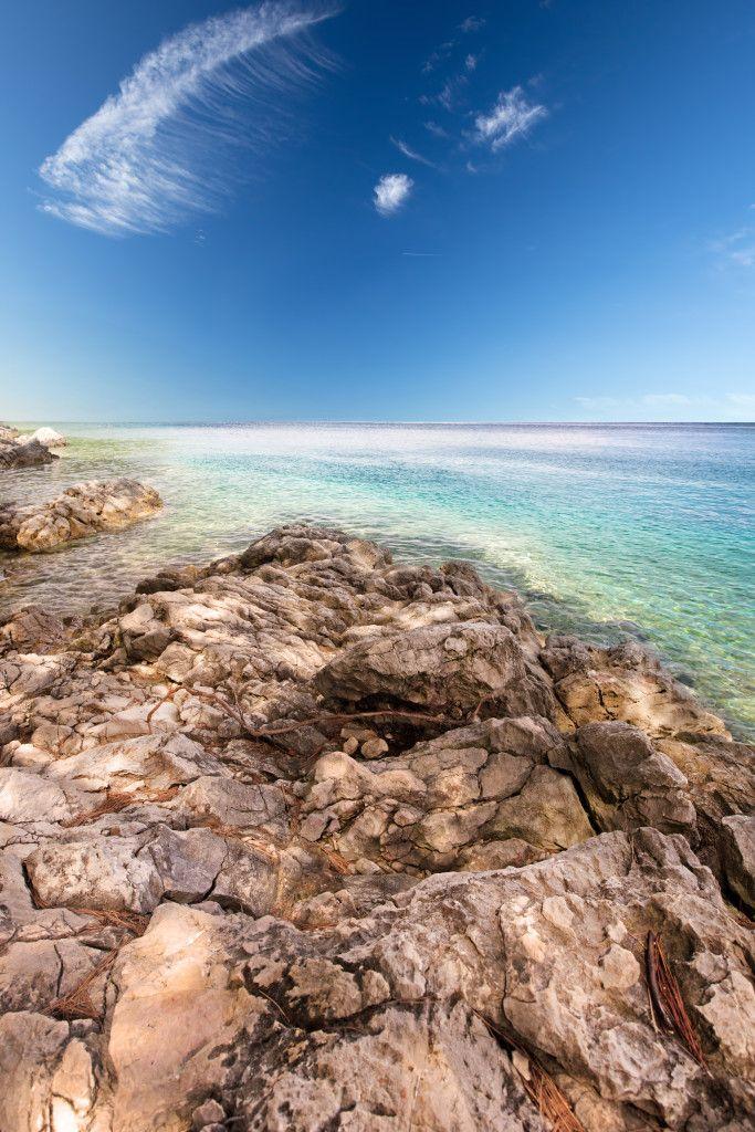 Beach scenery with pine tree in Croatia, Istria, Europe