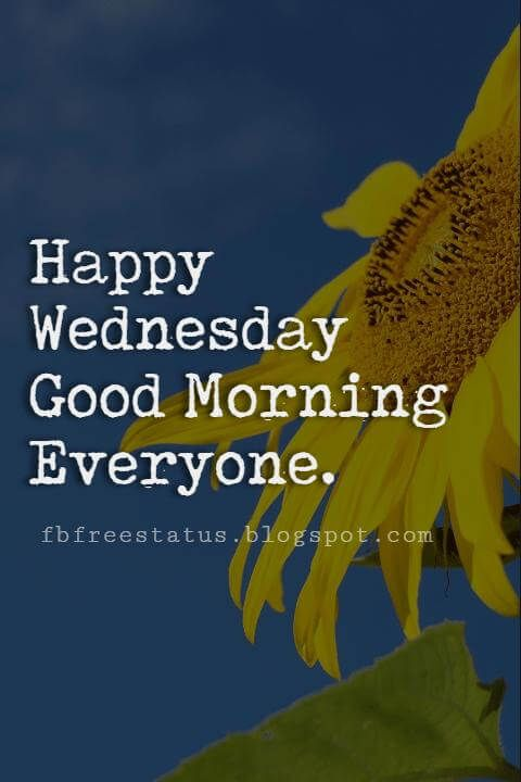 Happy Wednesday Pictures, Happy Wednesday good morning everyone.