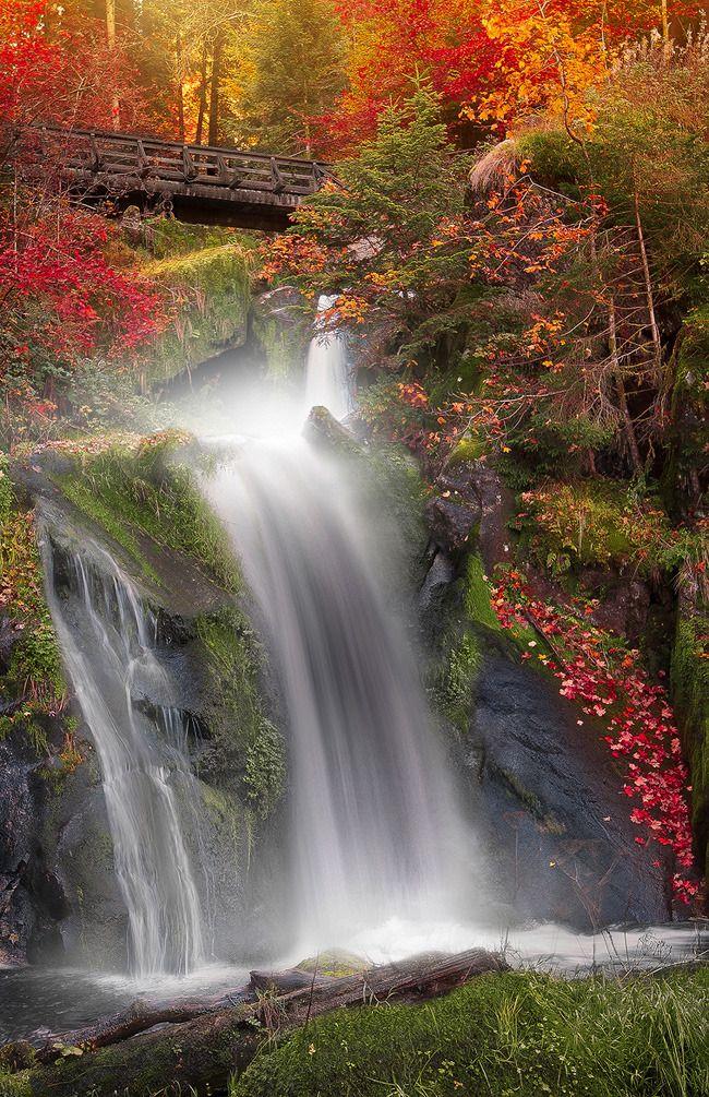Die Schöne Natur 7