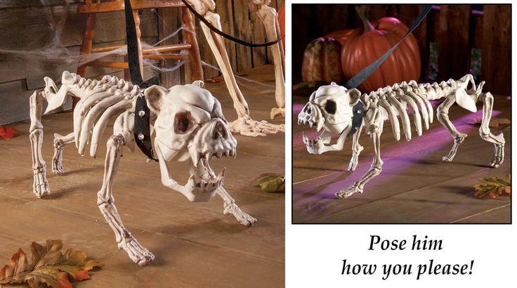 Posable Skeleton Dog Halloween Decoration BUY NOW