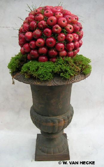 DUTCH - Baroque vase medics, blood-red ornamental apples and delicate green moss turns in a sober and simple color palette a composition full of nostalgia....