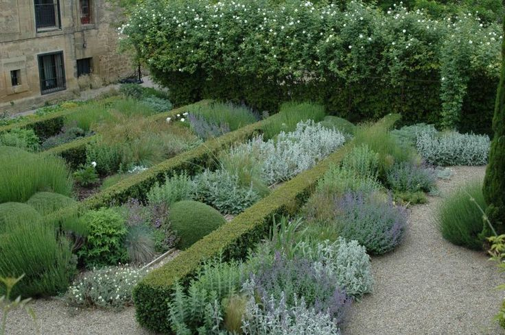 17 best images about planting on pinterest