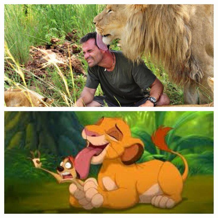 Lion Love, Disney Style with Kevin Richardson https://www.facebook.com/kevinrichardson.zoologist