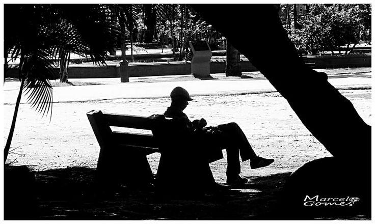 Solitário  by Marcelo  Gomes on 500px