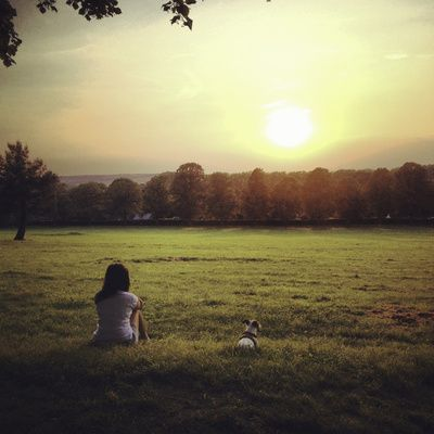 Women and Jack Russell dog at sunset Art Print