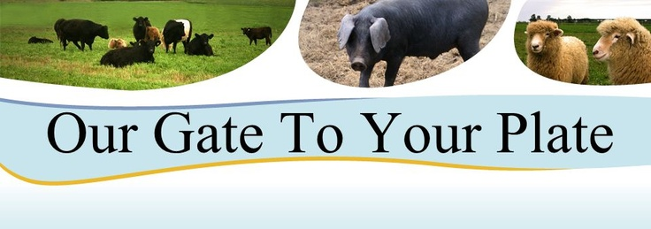 Our gate to your plate - grimsby