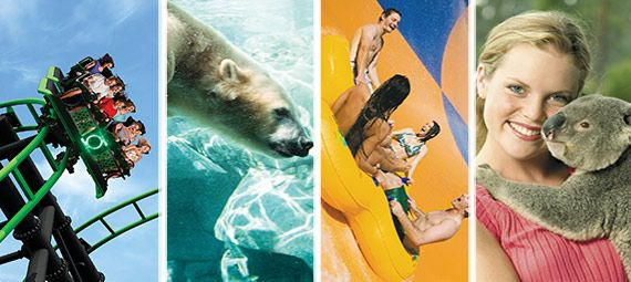 Things to do Gold Coast - Theme Parks, Tours | Experience Oz