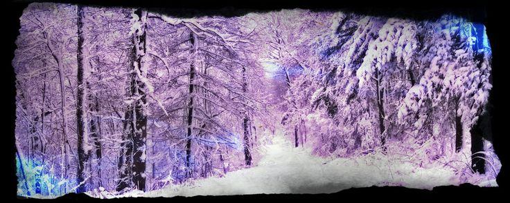 Purple Snow by MsValentines.deviantart.com on @DeviantArt