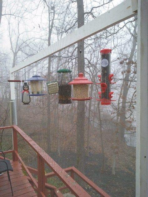 The best bird feeding station ideas on pinterest