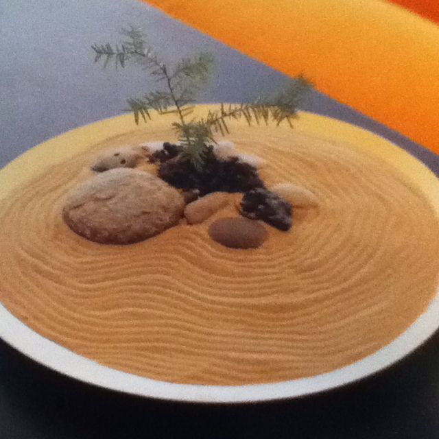Zen Sand Garden, please please please,,, for my room!