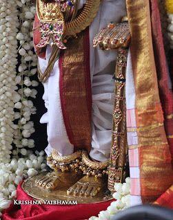 Thiruvallikeni Sri Parthasarathy Perumal Rohini Purappadu